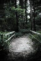 Trail of Darkness by robertllynch