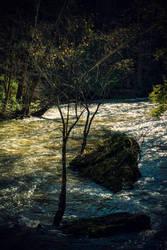 Rocky River by robertllynch