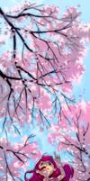 Day 05 - Sakura in Bloom
