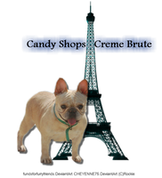 Le French Bulldog by BittersweetLullaby9