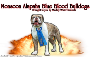 Alapaha Blue Blood Bulldogs by BittersweetLullaby9