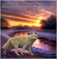 Arctic Wolf w/ Sunset by BittersweetLullaby9