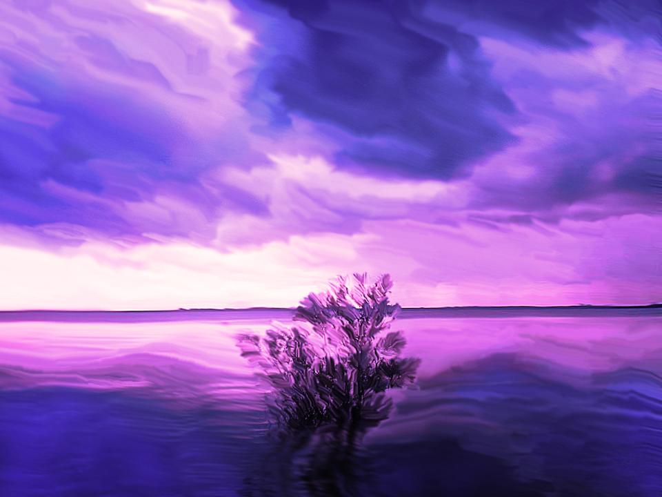 Purple sunset by nicolekaro