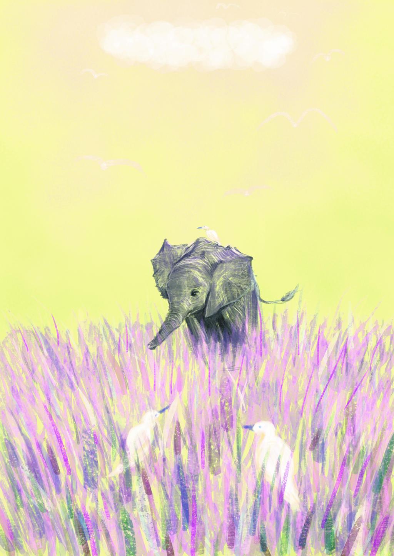 Bildergebnis für elefant in lavender fields
