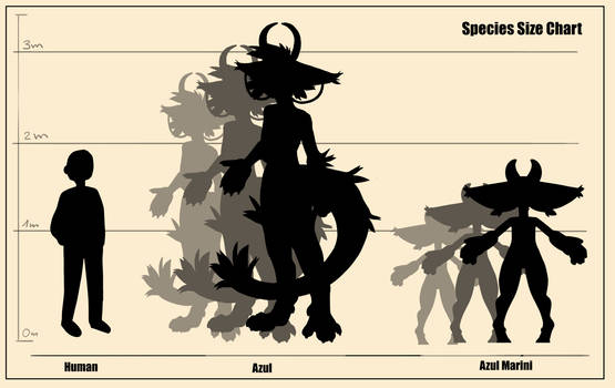 Size chart of the Azul species