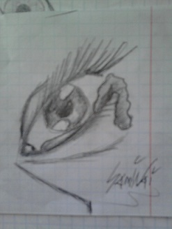 oko by SamiNai