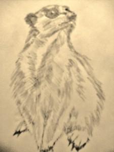 MustacheMisa's Profile Picture
