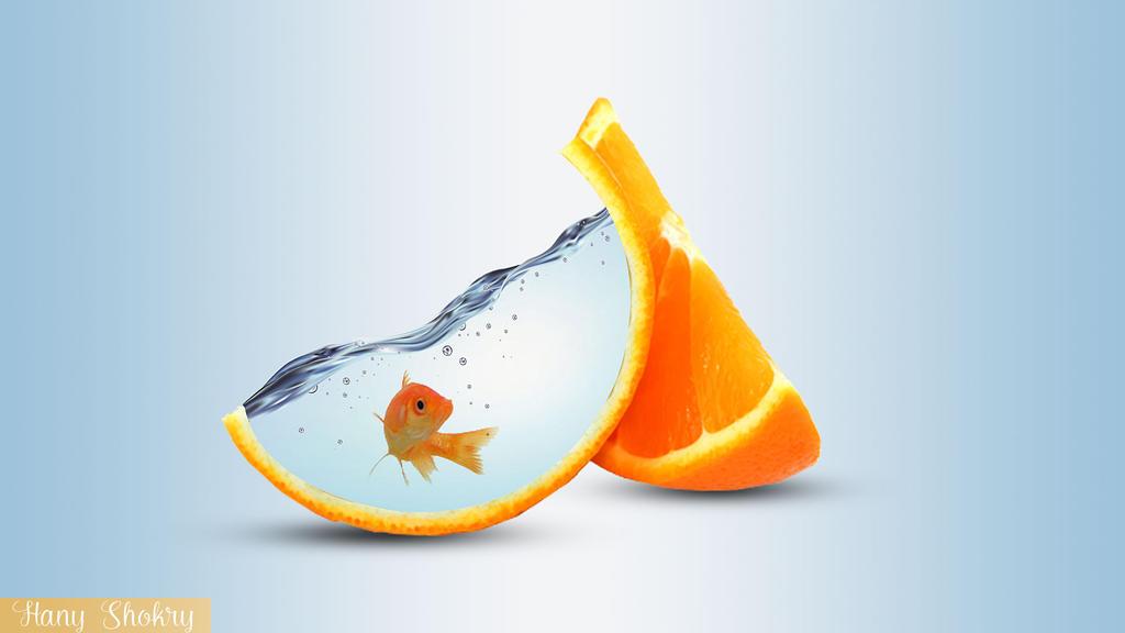 Orange Manipulation by hano22