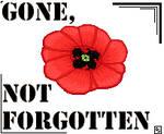 Gone, Not Forgotten by djsoblivion1990