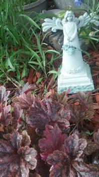 Photo - Garden Angel