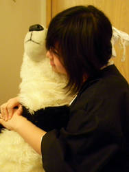 Momo Loves Pandas by BlueLightYing