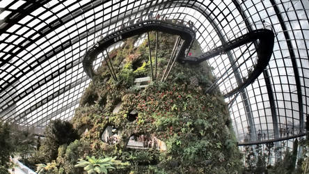 Cloud Forest @ Gardens By The Bay by kate-takako