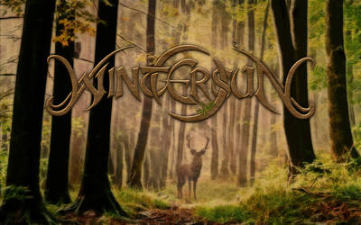 Wintersun - Forest by PlaysWithWolves