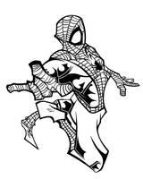 Spider-Man by Beserk