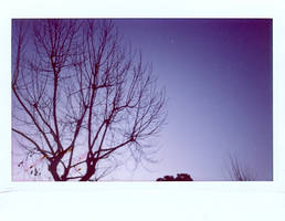 a luz do amanhecer