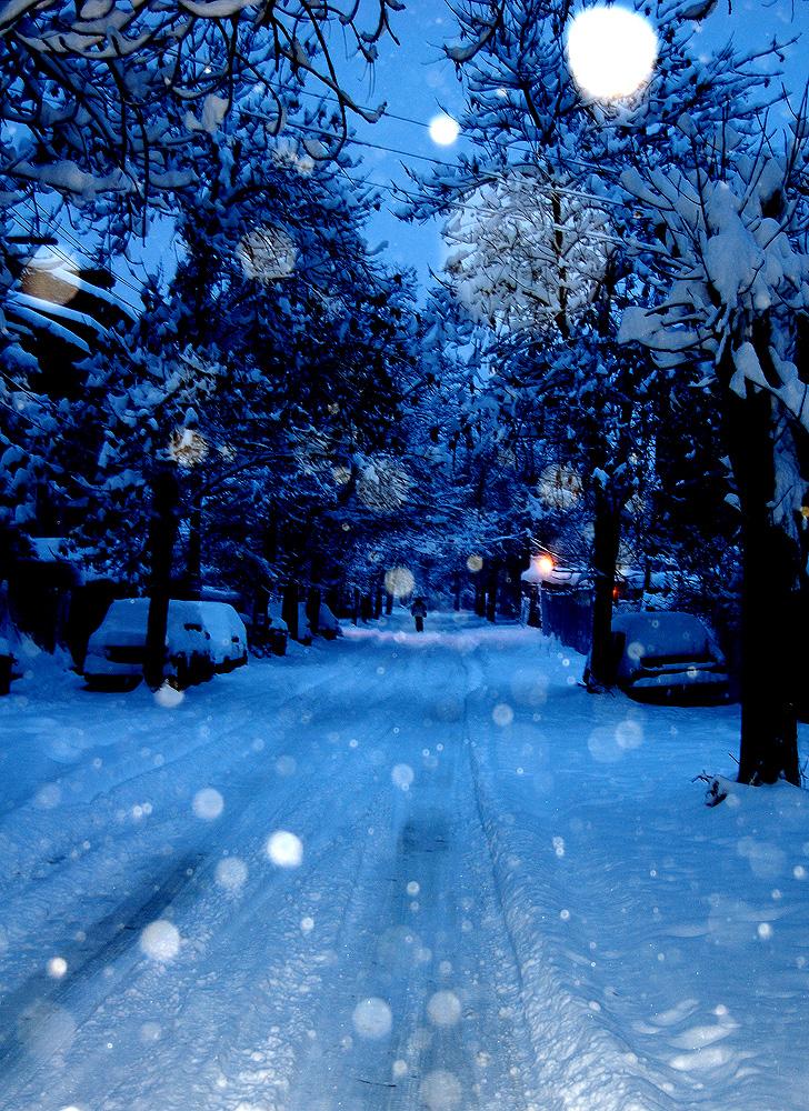 Snowed. by Sentrix