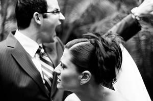 The Wild Wedding by Sentrix
