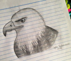 Eagle by SoReit