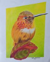 Hummingbird by SoReit