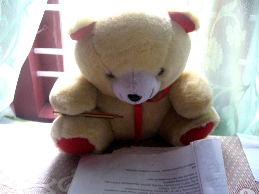 Exams Fever Exam Fever by Anupamas