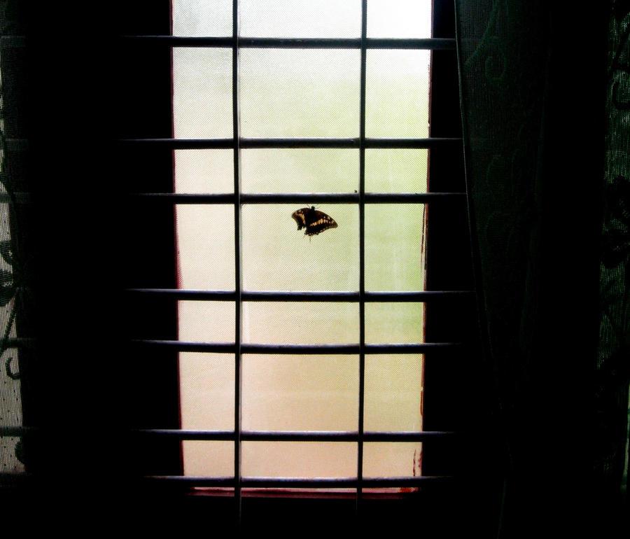 locked inside by anupamas