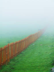Fence in the Fog by queely