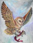 Barn Owl Prize