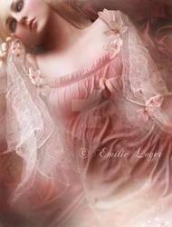 Rose by emilieleger
