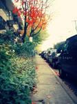 Automne urbain by emilieleger