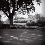 Arles by Crazyrockgirl