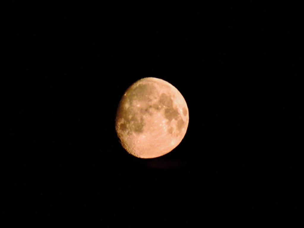 Moonlight by ramond997