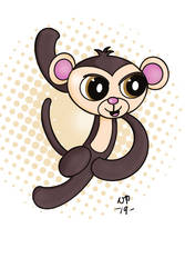 Miniki the Rubber Monkey