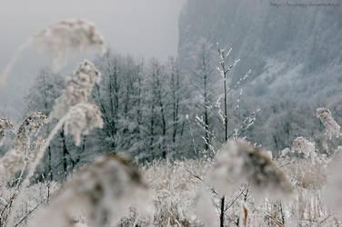 Winter-5 by LevyNagy
