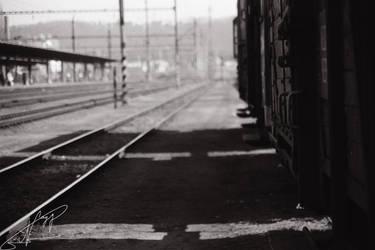 35mm film-166 by LevyNagy