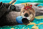 Oki the baby sea otter