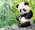cute panda cub and grub