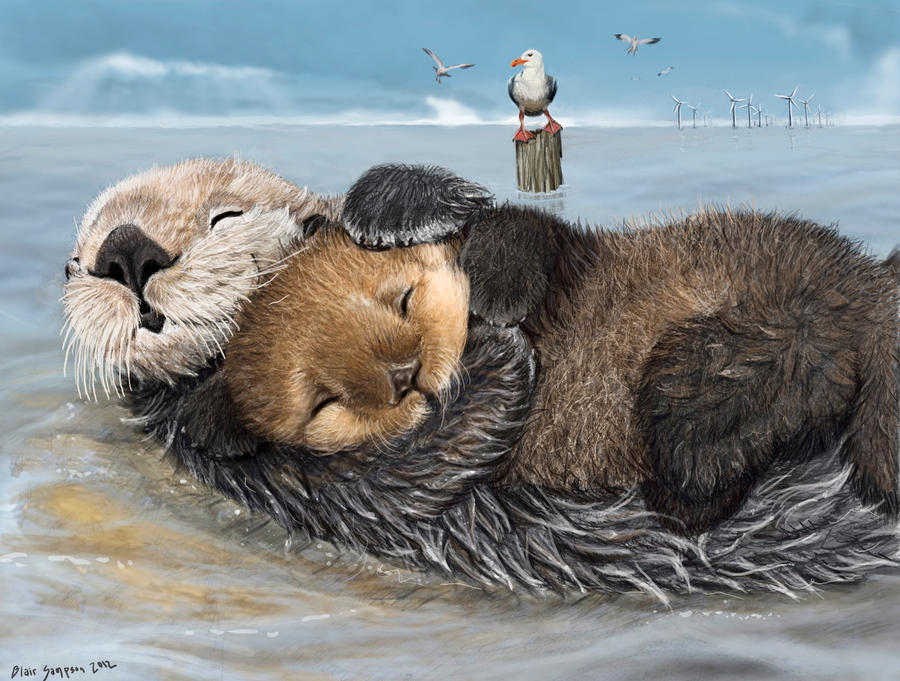sea otter mums have tender hearts by Psithyrus
