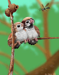 Sparrow Couple and Wasp Mom  Good Neighbours by Psithyrus