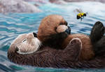 sea otter mom, pup, and bumblebee