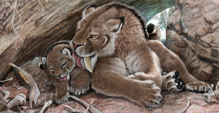Survival of the Cuddliest, Smilodon fatalis family