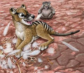 Iluka Eats Karl, Thylacine, Wombat, and Chicken by Psithyrus