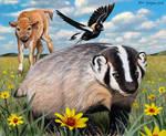 badger buddies