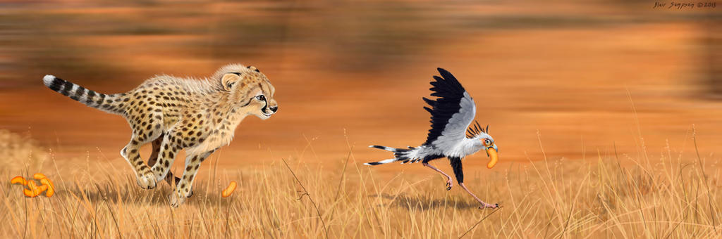 Cheetah and Secretary Bird: The Great Cheeto Chase by ...