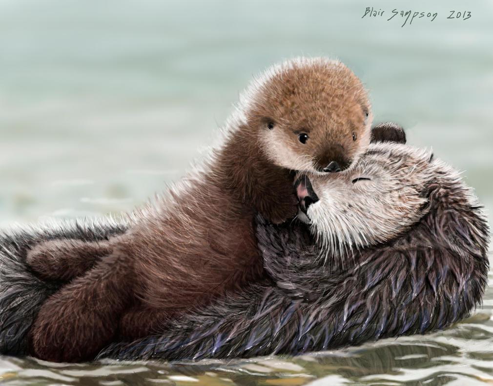 Sea Otter Pup hugs Mom...