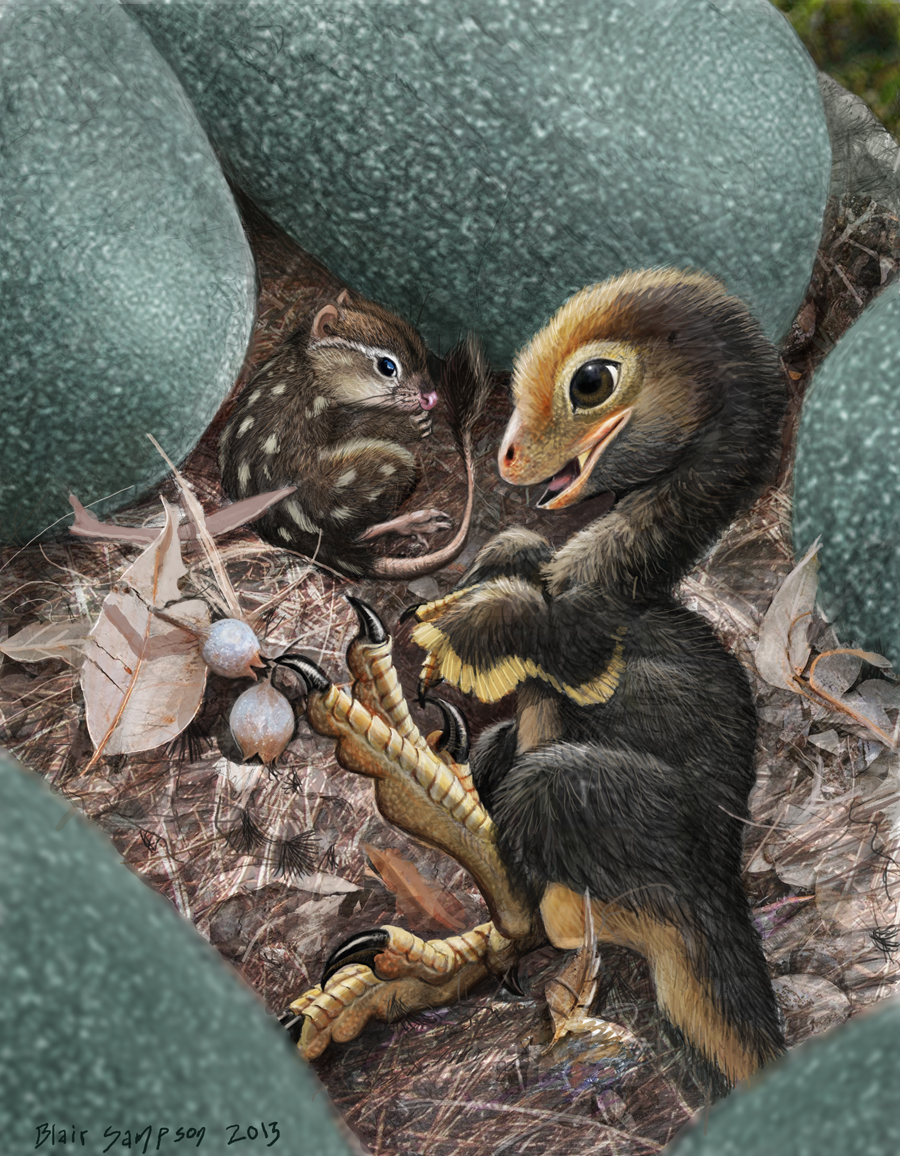 baby deinonychus and mammal assistant by psithyrus on