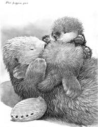 SEA OTTER MOTHERS DAY CARD SKETCH