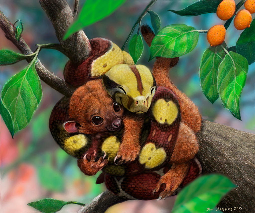 Squeezably soft  baby boa and kinkajou by Psithyrus