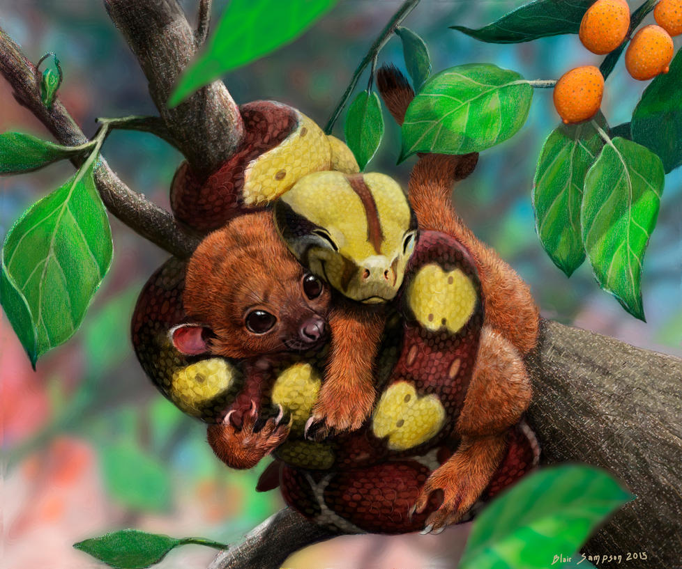 Squeezably soft  baby boa and kinkajou by Psithyrus