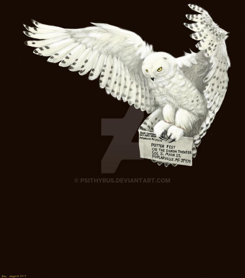 Potterfest 2017 Snowy Owl by Psithyrus
