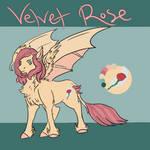 Next gen: Velvet Rose